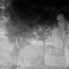 La statua scomparsa