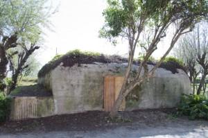 L'ingresso del bunker nel 2014 dopo la pulizia eseguita dal Comune in seguito alla nostra richiesta. La parte più bassa a sinistra è il corridoio che porta alla postazione con la mitragliatrice che però è stata murata.