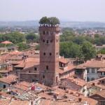 torre_dei_guinigi_made_in_italy