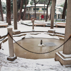 Milano Marittima e il male d'inverno (seconda parte)