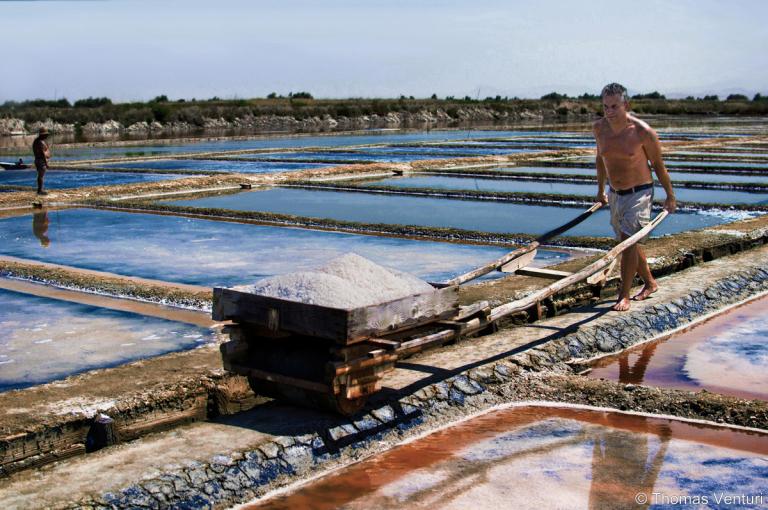 La raccolta del sale a Cervia