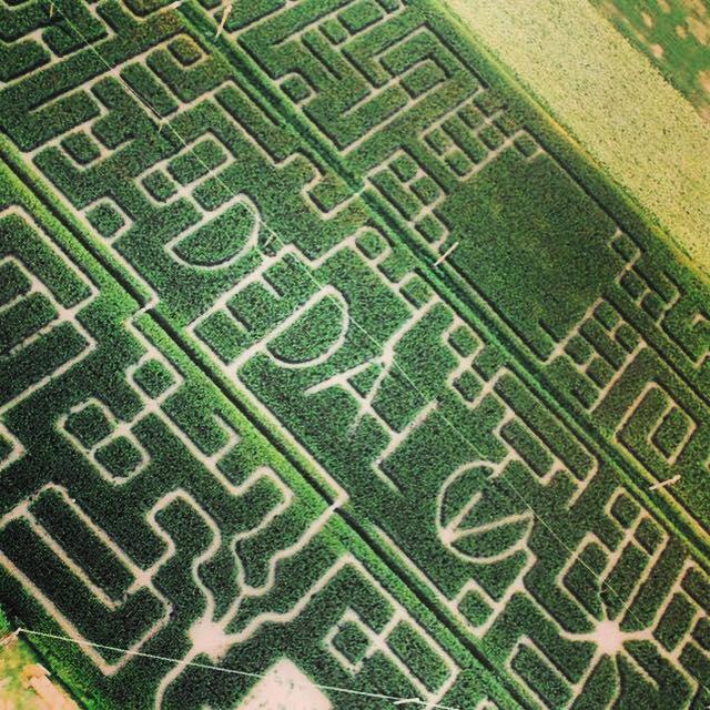 labirintoDedalo Cervia